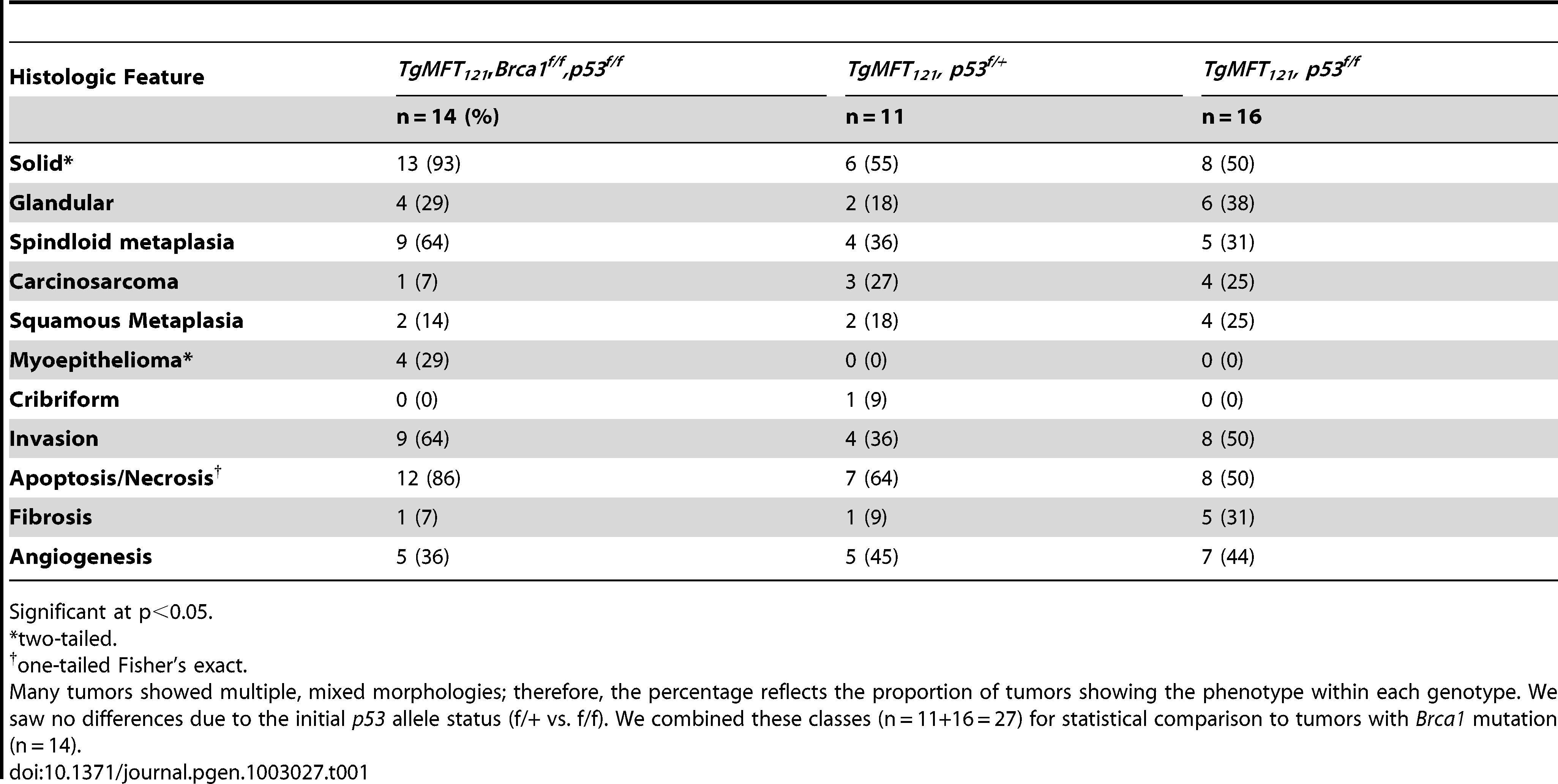 Characteristics of TP and TBP tumors.