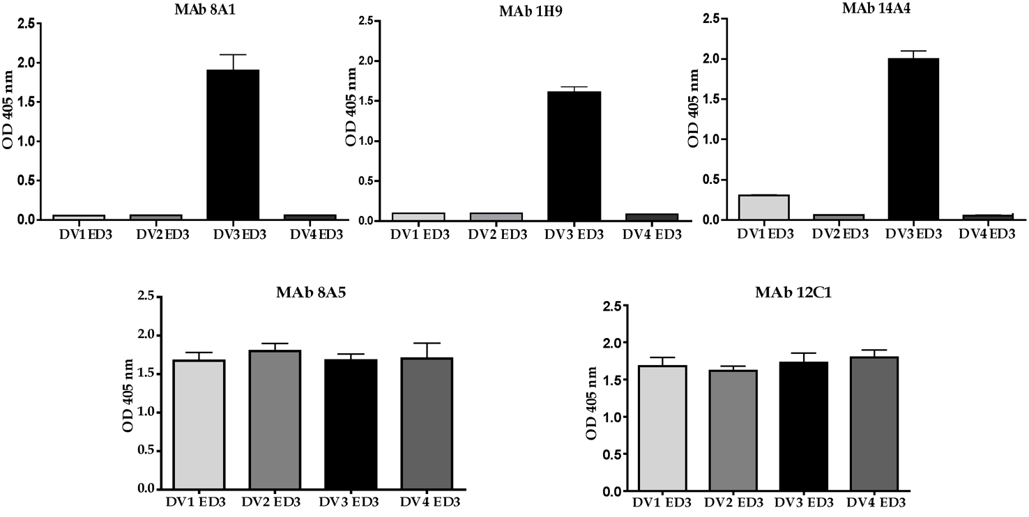 Binding of mouse MAbs to recombinant EDIII from the 4 serotypes of DENV.