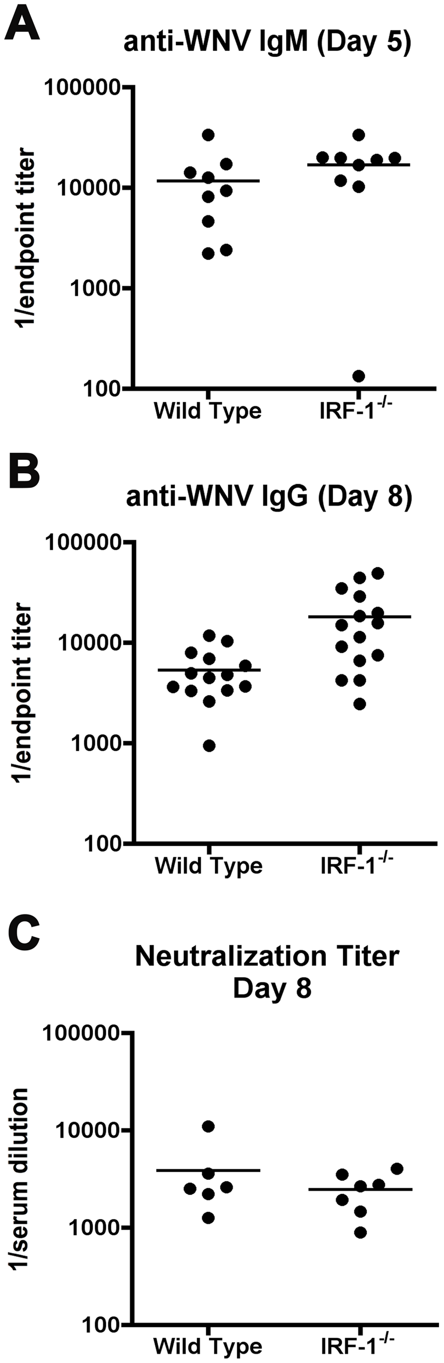 Antibody responses in <i>IRF-1</i><sup>-/-</sup> mice remain intact after WNV infection.