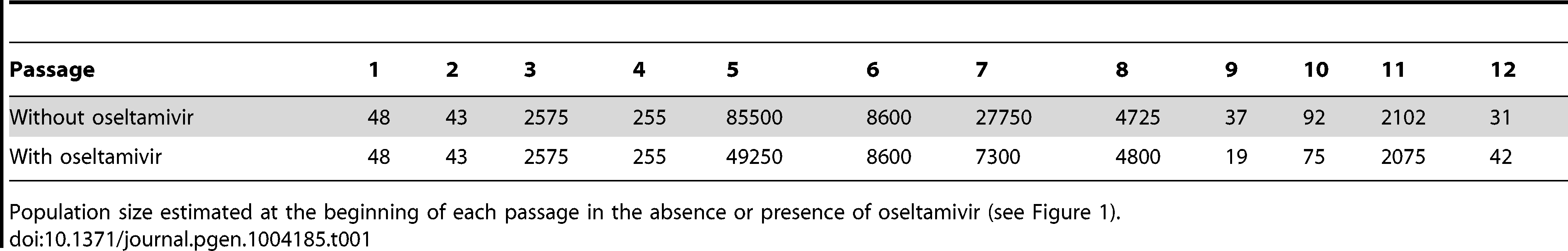 Bottleneck sizes at each passage.