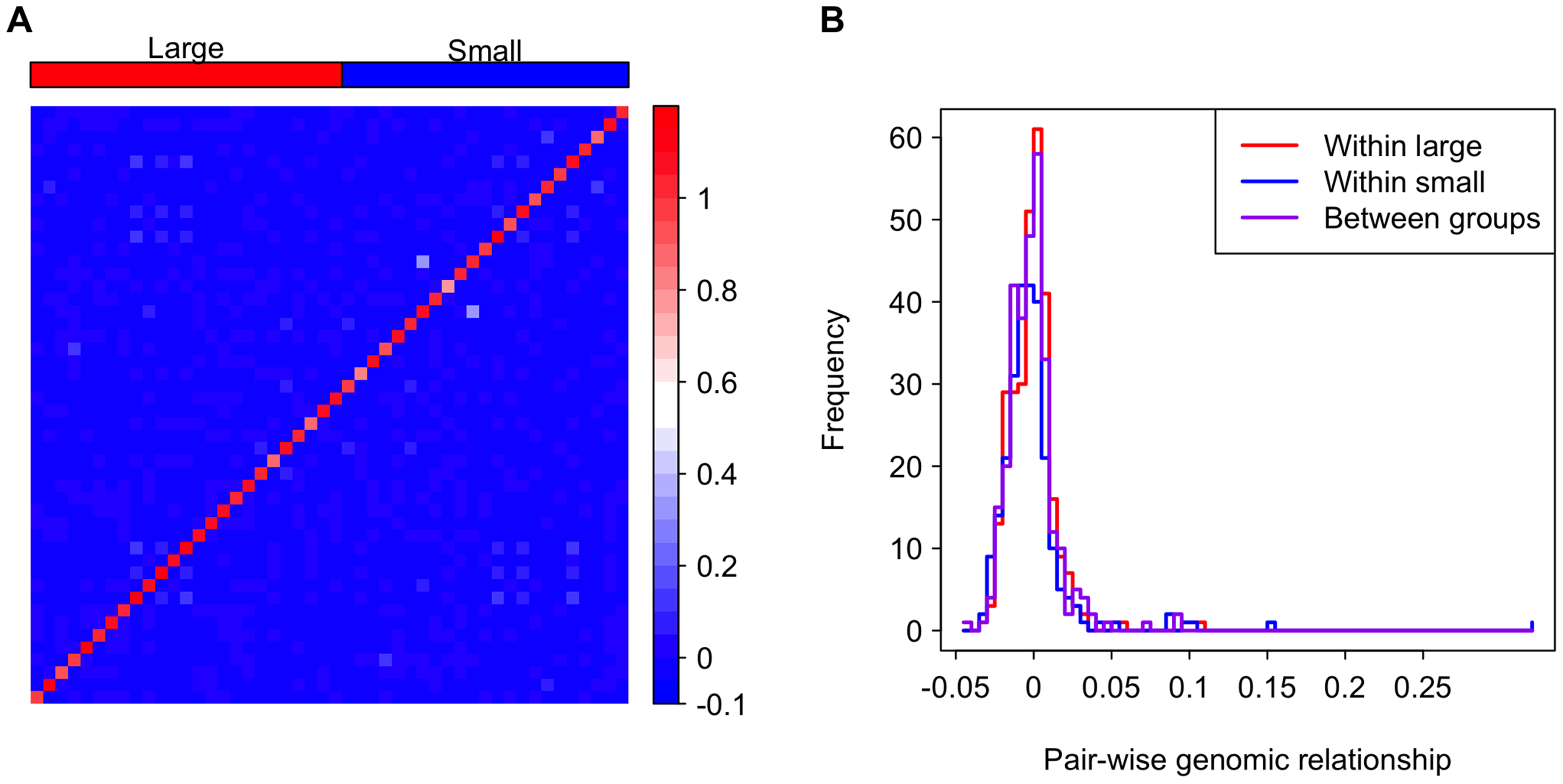 Genomic relationship among and between the large and small genome groups.