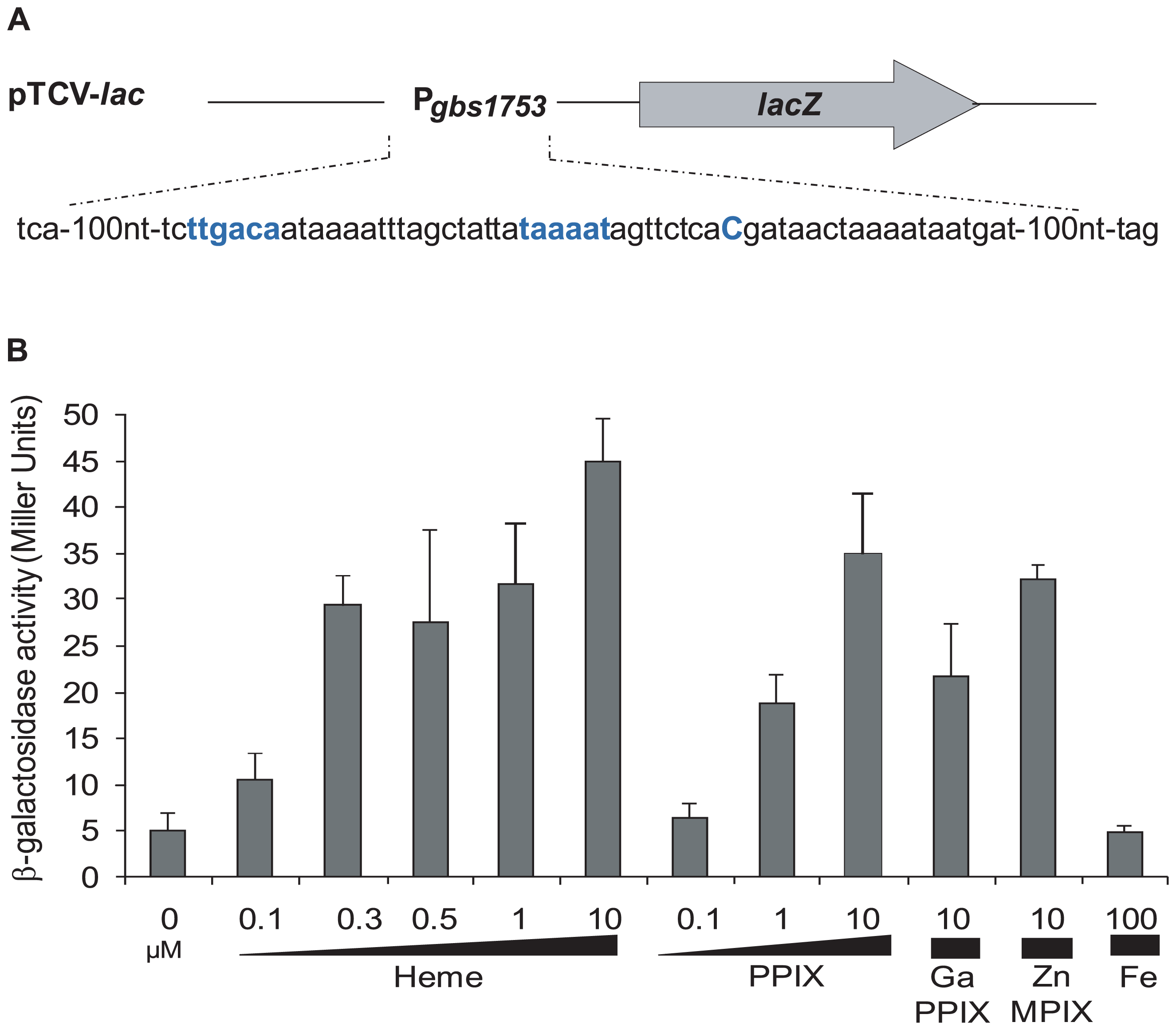 The <i>pefAB</i> locus is induced by porphyrin molecules: heme, PPIX, GaPPIX and ZnMPIX.