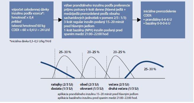 Schéma 5.1 | Úvodný inzulínový režim u DM1T pri preferencii stravovania 6-krát denne