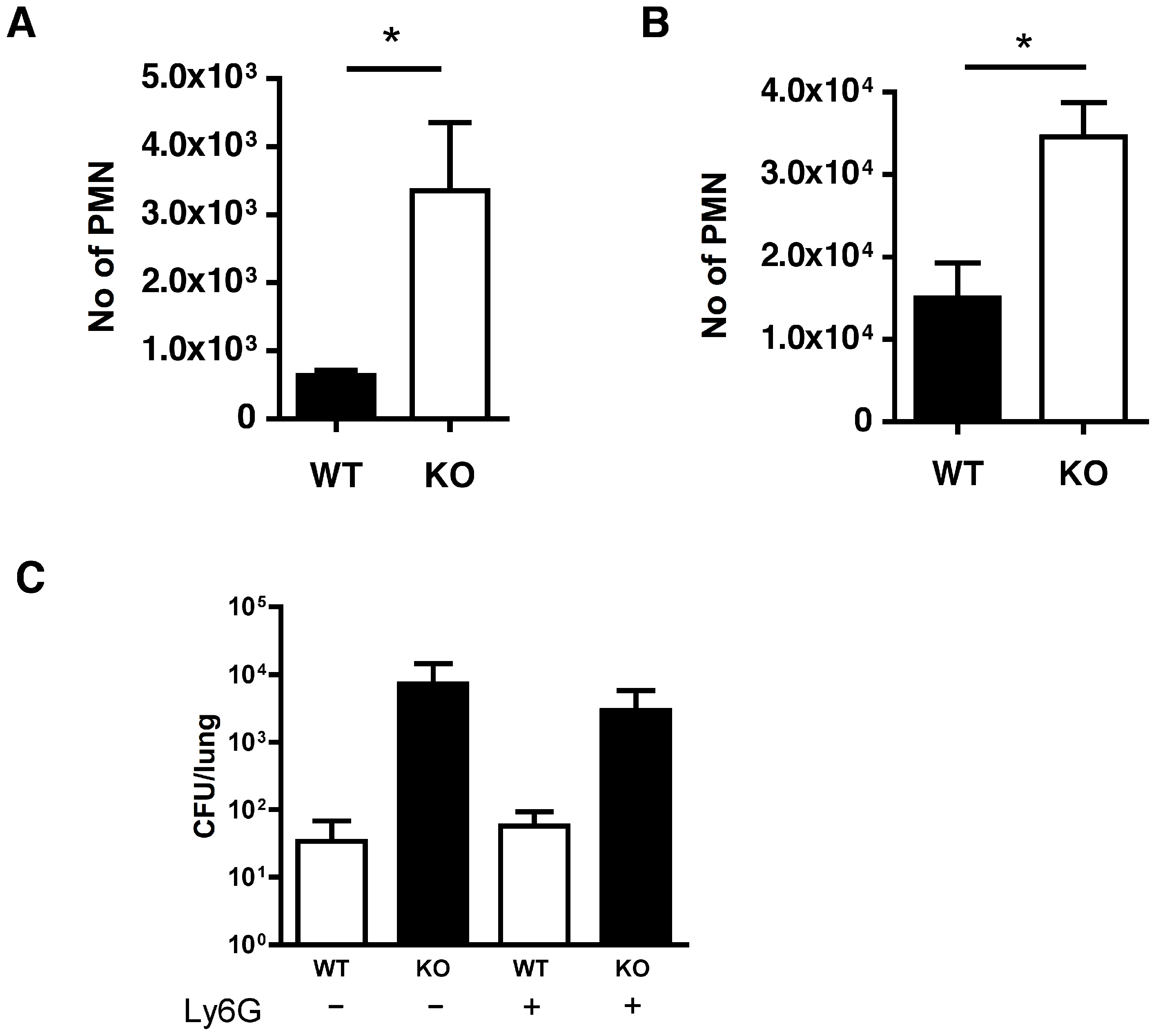 Absence of functional cathepsin D in macrophages results in increased neutrophil recruitment.