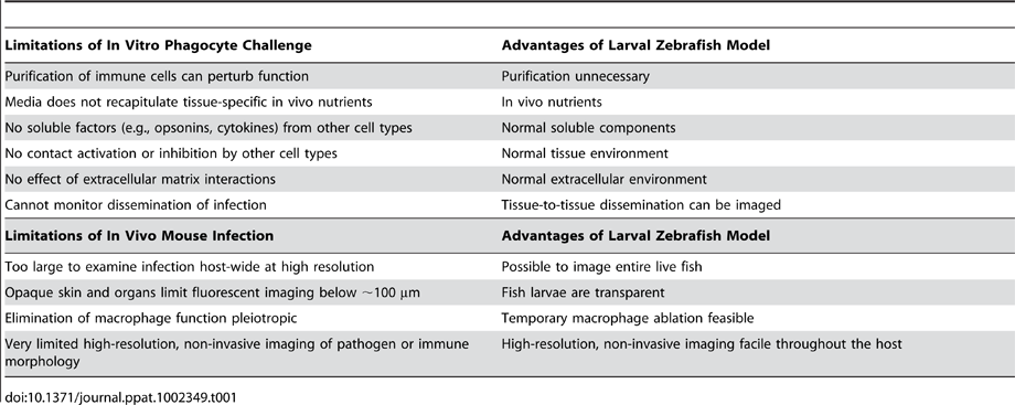 Advantages of embryonic zebrafish model for study of innate immune-pathogen interaction.