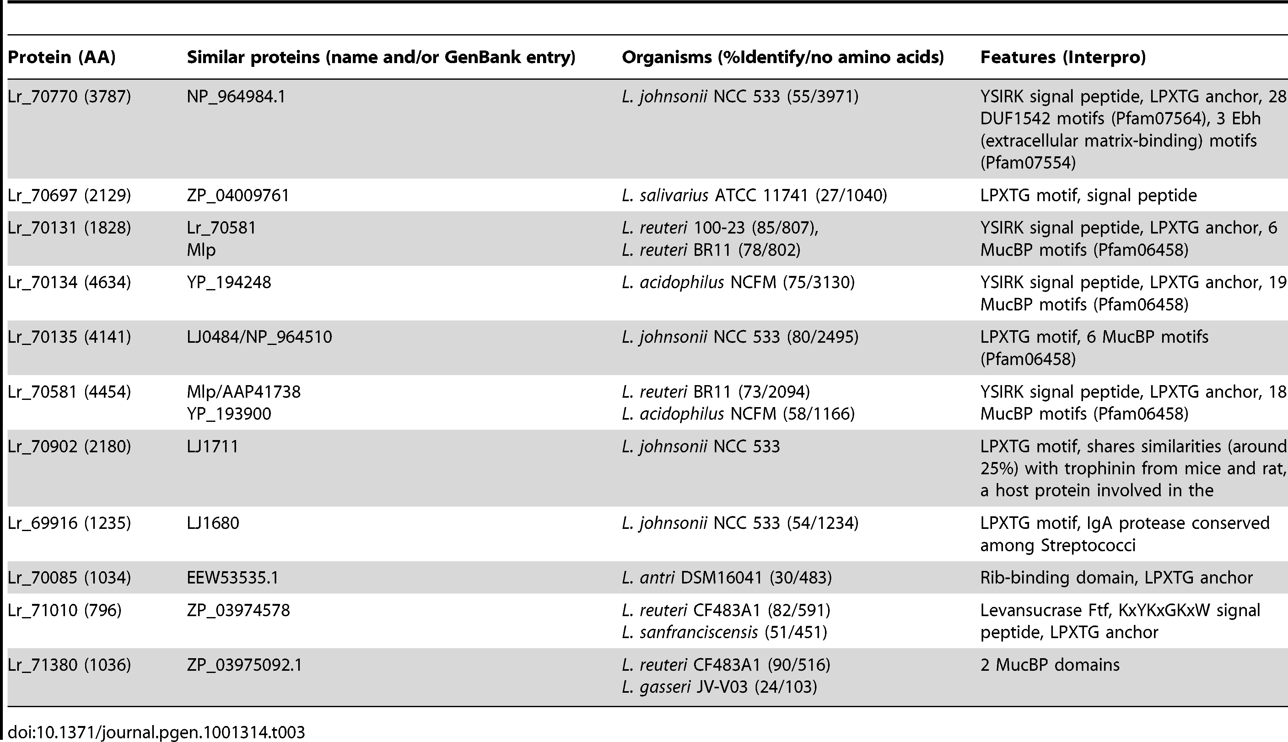 Large surface proteins (>750 amino acids) specific to rodent strains.