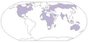Země s možným přenosem západonilské horečky (Upraveno dle Tsai TF et al. Flaviviruses. In: Mandell GL, Bennett JE, Dolin R (eds). Principles and practice of infectious diseases. 6th ed. Philadelphia: Elsevier; 2005: 1927.