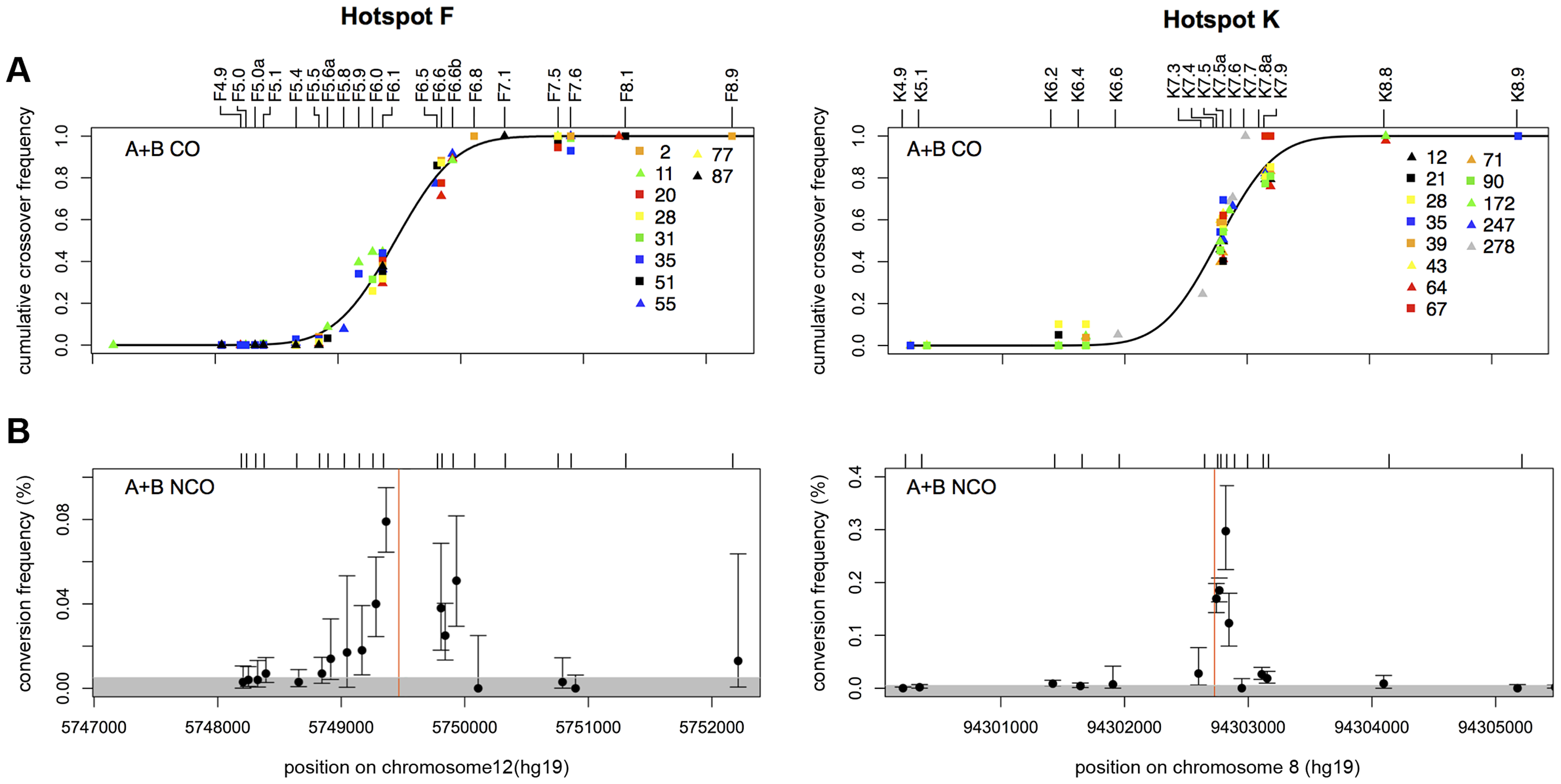 CO and NCO distributions at recombination hotspots F and K.