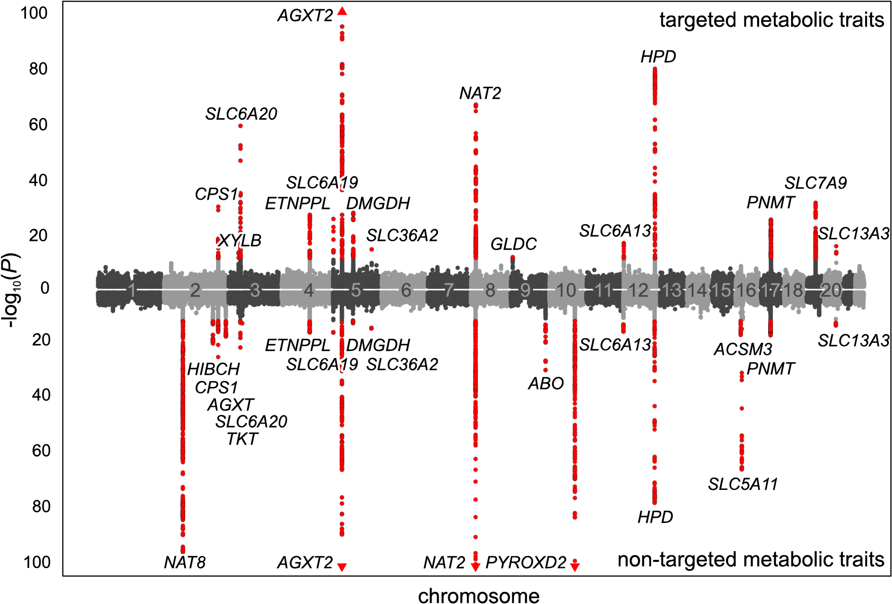 Manhattan plot of genetic associations to targeted and non-targeted traits.