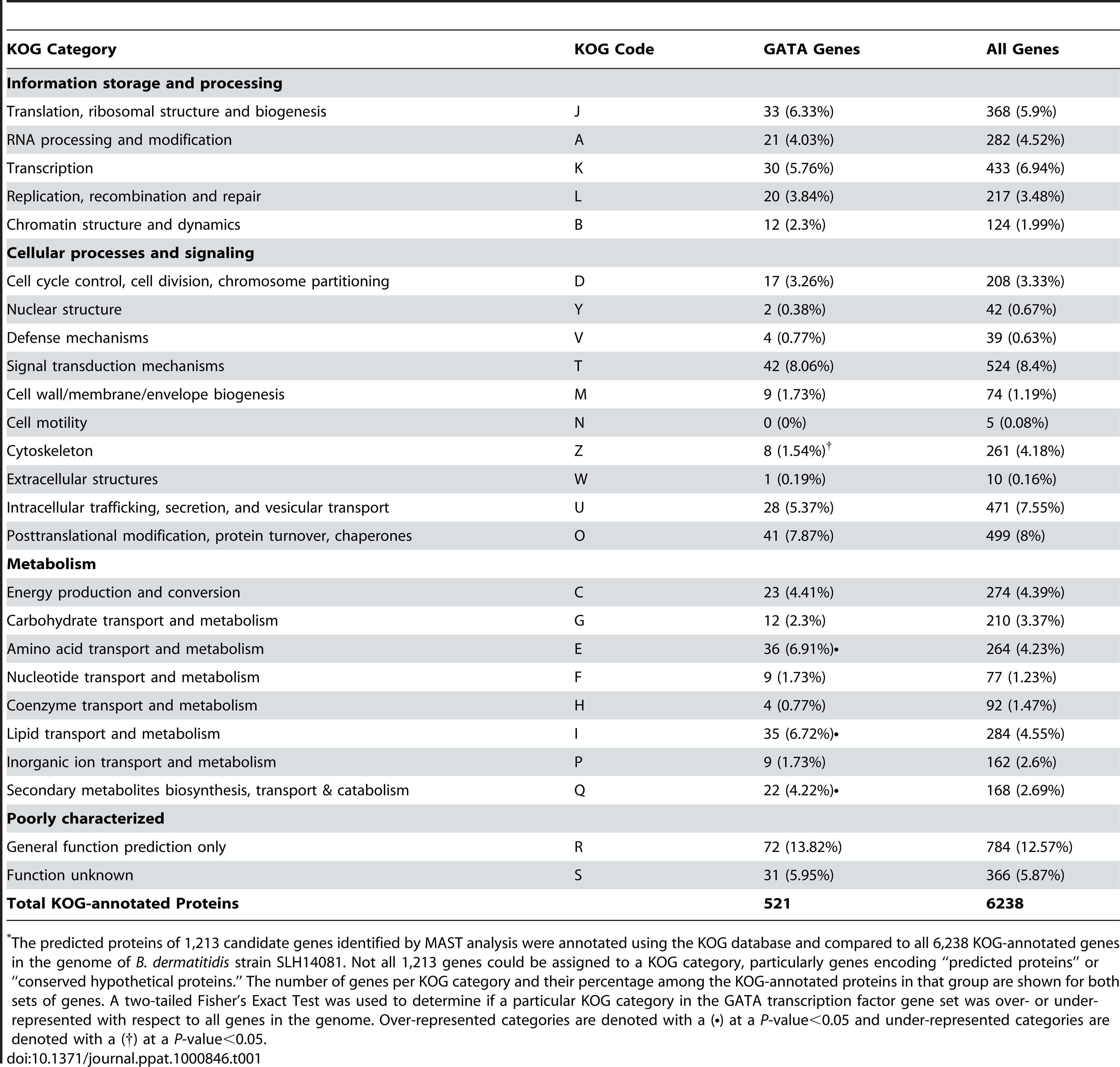 Enrichment of GATA-containing genes in <i>B. dermatitidis</i> according to KOG category<em class=&quot;ref&quot;>*</em>.
