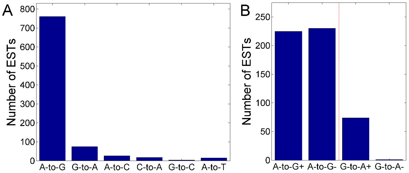 The number of ultra-editing events by mismatch type and strand.
