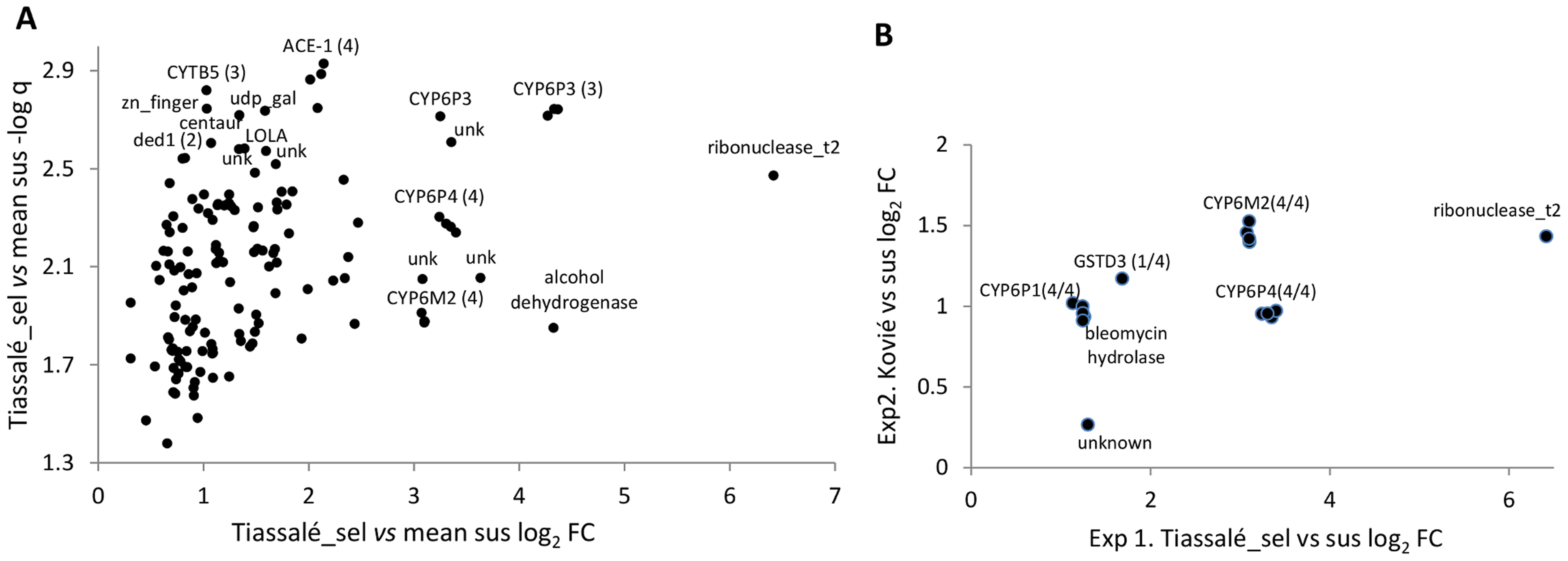 Genes significantly overexpressed (relative to susceptible samples) in (A) Tiassalé bendiocarb resistant samples in Exp1, and (B). both Tiassalé and Kovié samples.