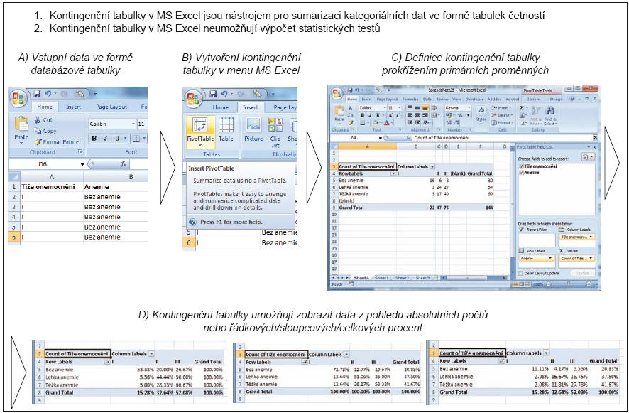 Příklad 7. Práce s kontingenčními tabulkami v MS Excel.