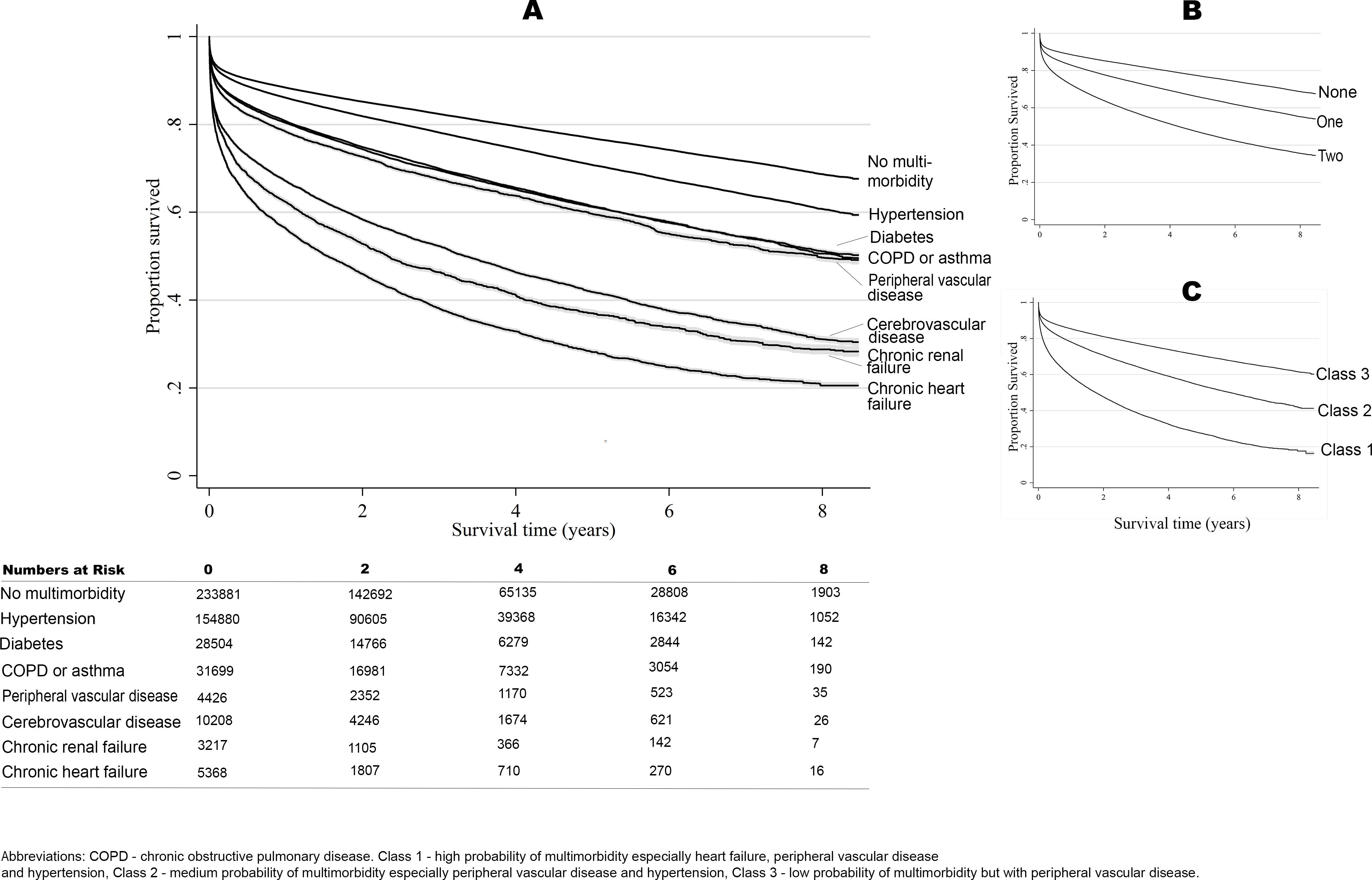 Long-term survival according to multimorbidity phenotype.