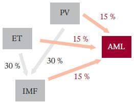 Historická představa rizika přechodu MPO do IMF a do s-AML. Podle Pettita [51].