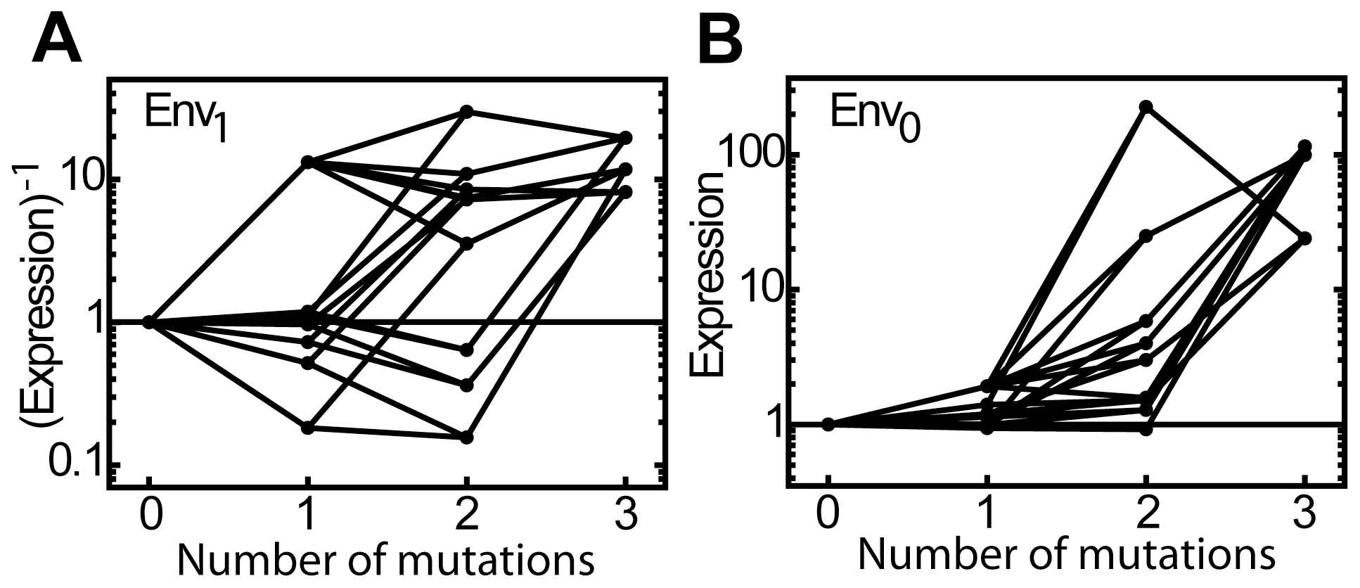 Mutational effects on expression in both environments.