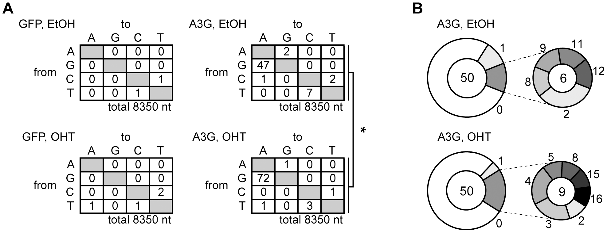 Mutation frequency of HBV NC-associated DNA in A3G expression and UNG inhibition.
