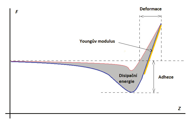 Závislost působící síly na pozici na ose Z – F-d křivka (červená křivka – přibližování, modrá – oddalování), a určení jednotlivých vlastností zF-d křivky během jednoho cyklu Peak Force Tapping. Upraveno z[24].