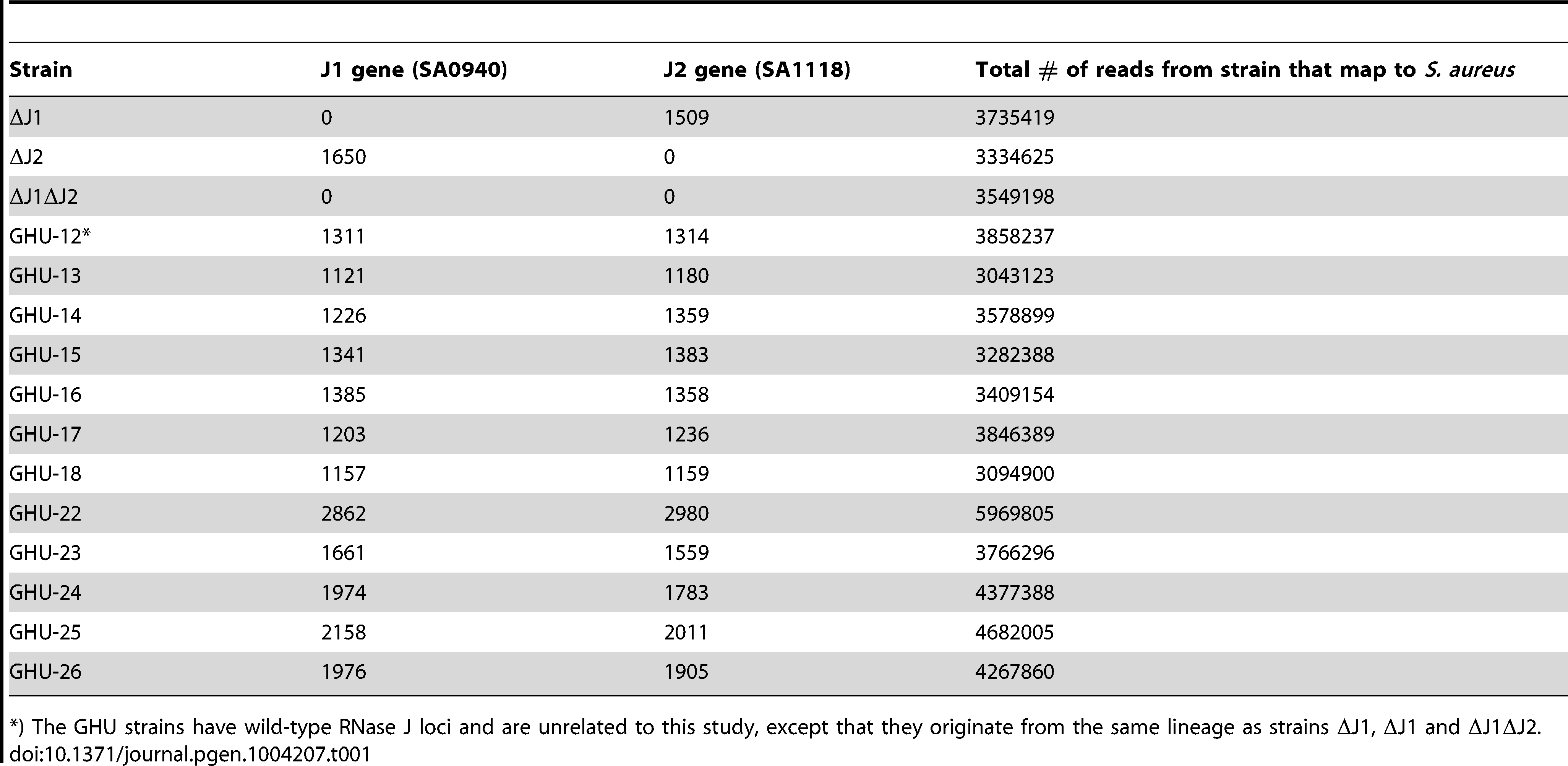 Reads mapping to the RNase J1 and RNase J2 genes in the RNase J deletion mutants and in unrelated strains (GHU-12 to 26).