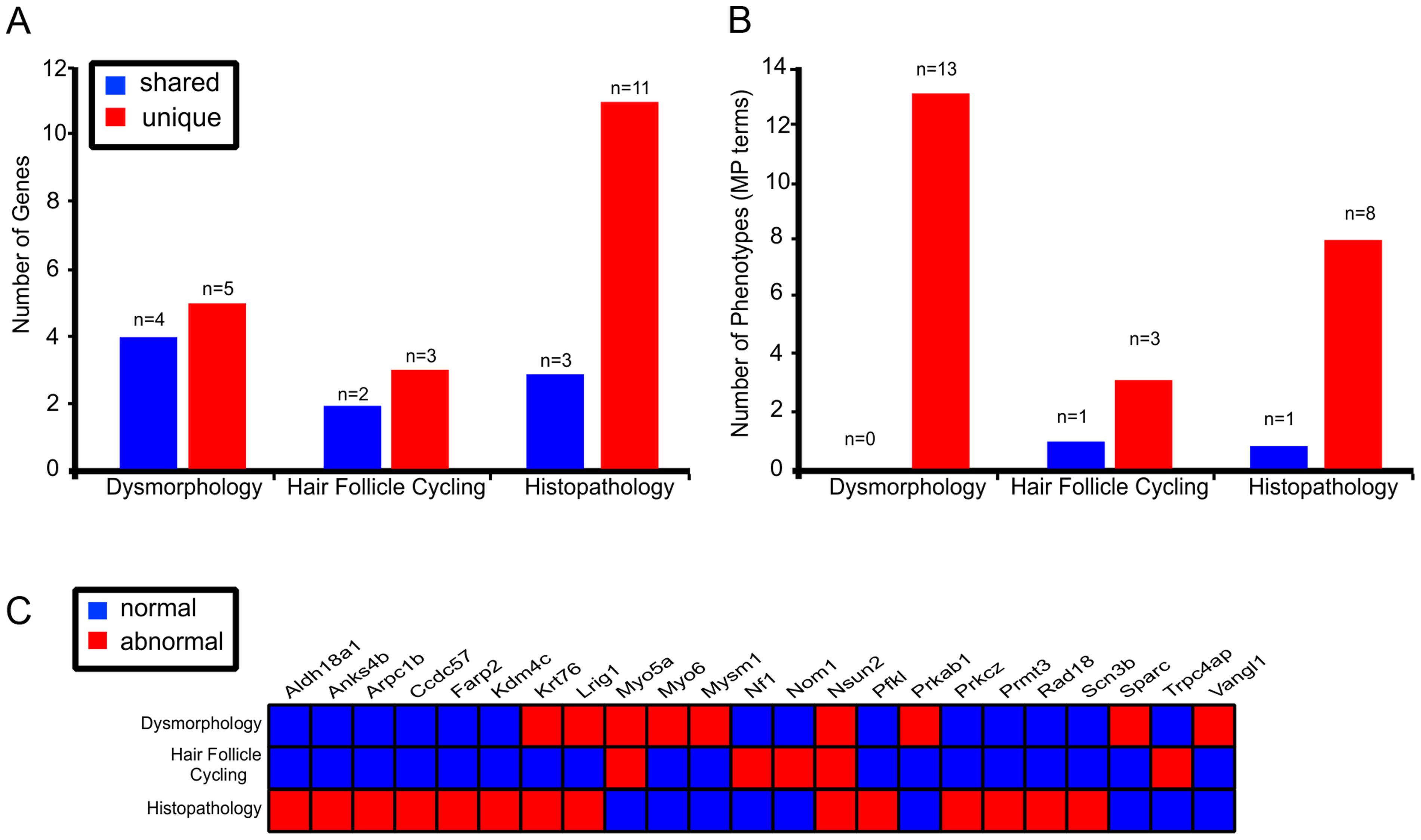 Multi parameter, multi test, organ specific screens add to the number of genes identified in skin biology.