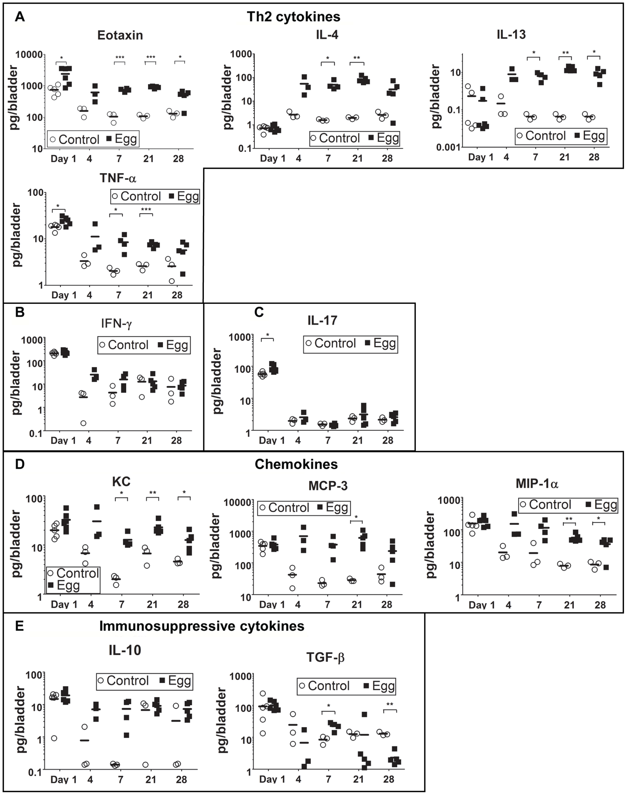 <i>S. haematobium</i> egg-injected bladders demonstrate a local Type 2 immune response.