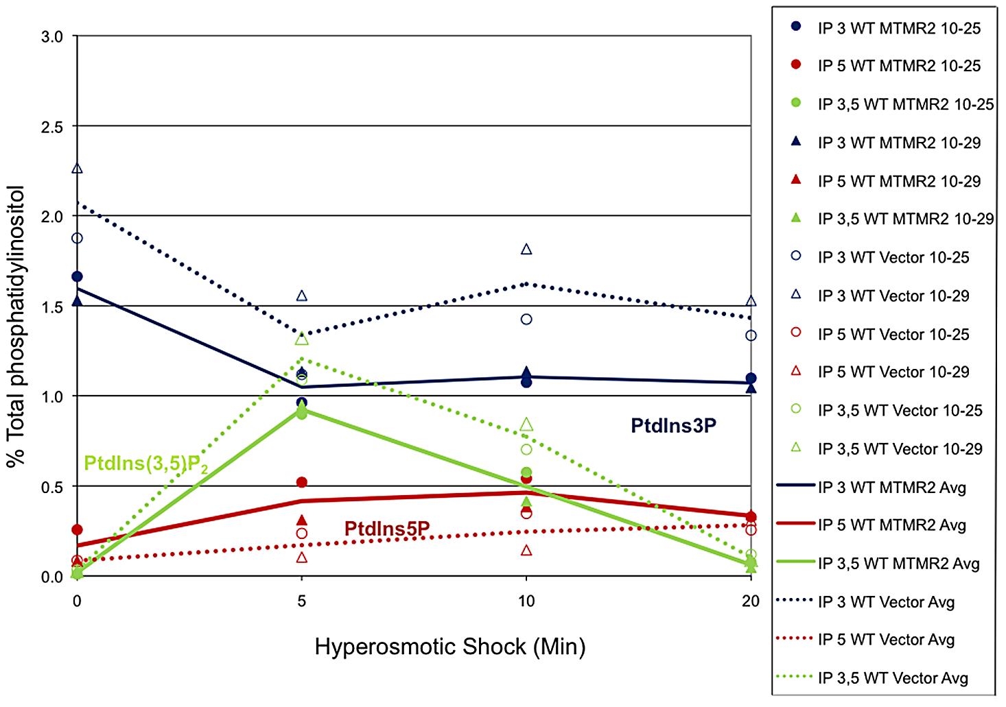 MTMR2 3-phosphatase activity in yeast.