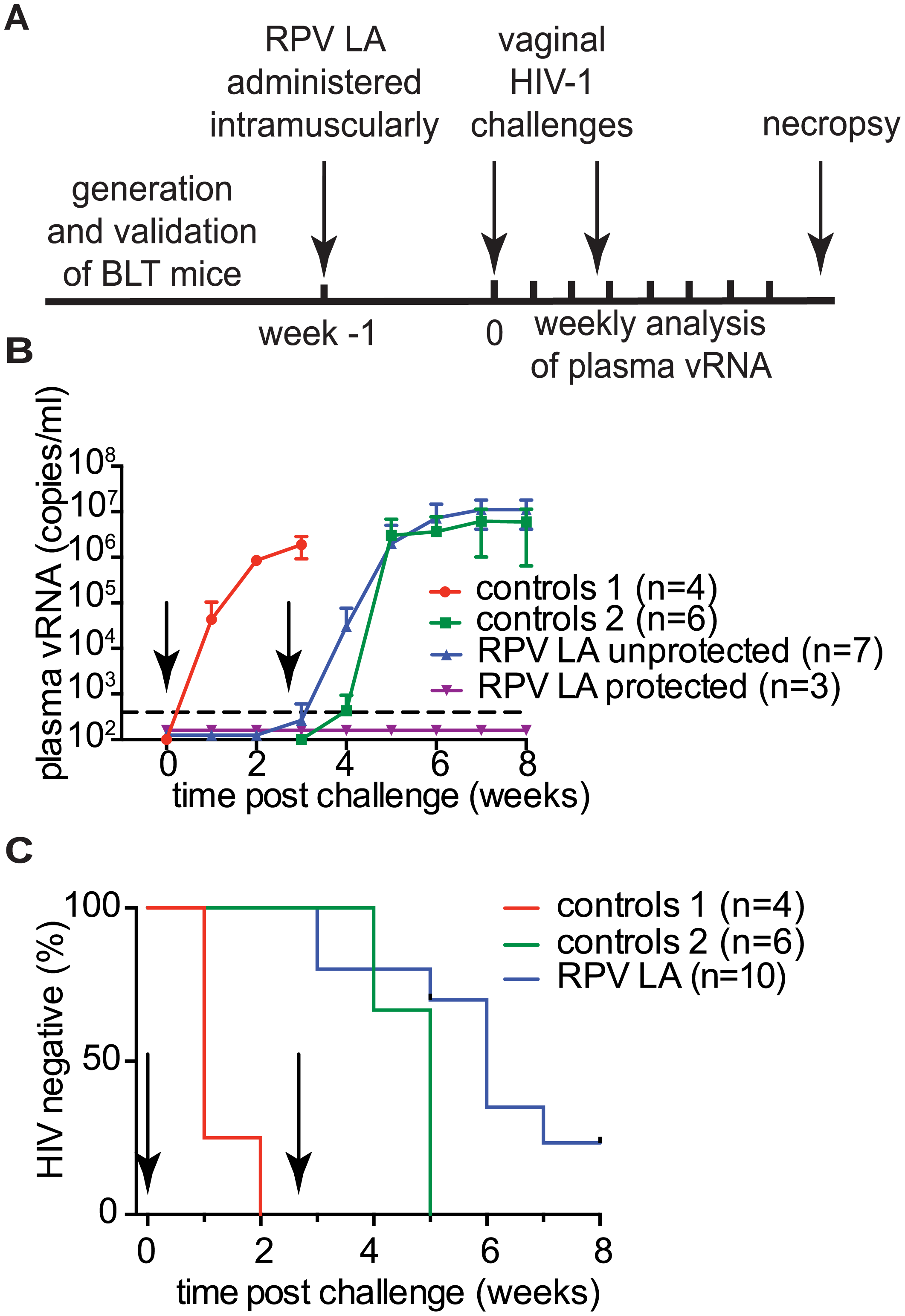 Analysis of RPV LA protection after exposure to high doses of multiple transmitted/founder viruses and an early passage primary isolate.