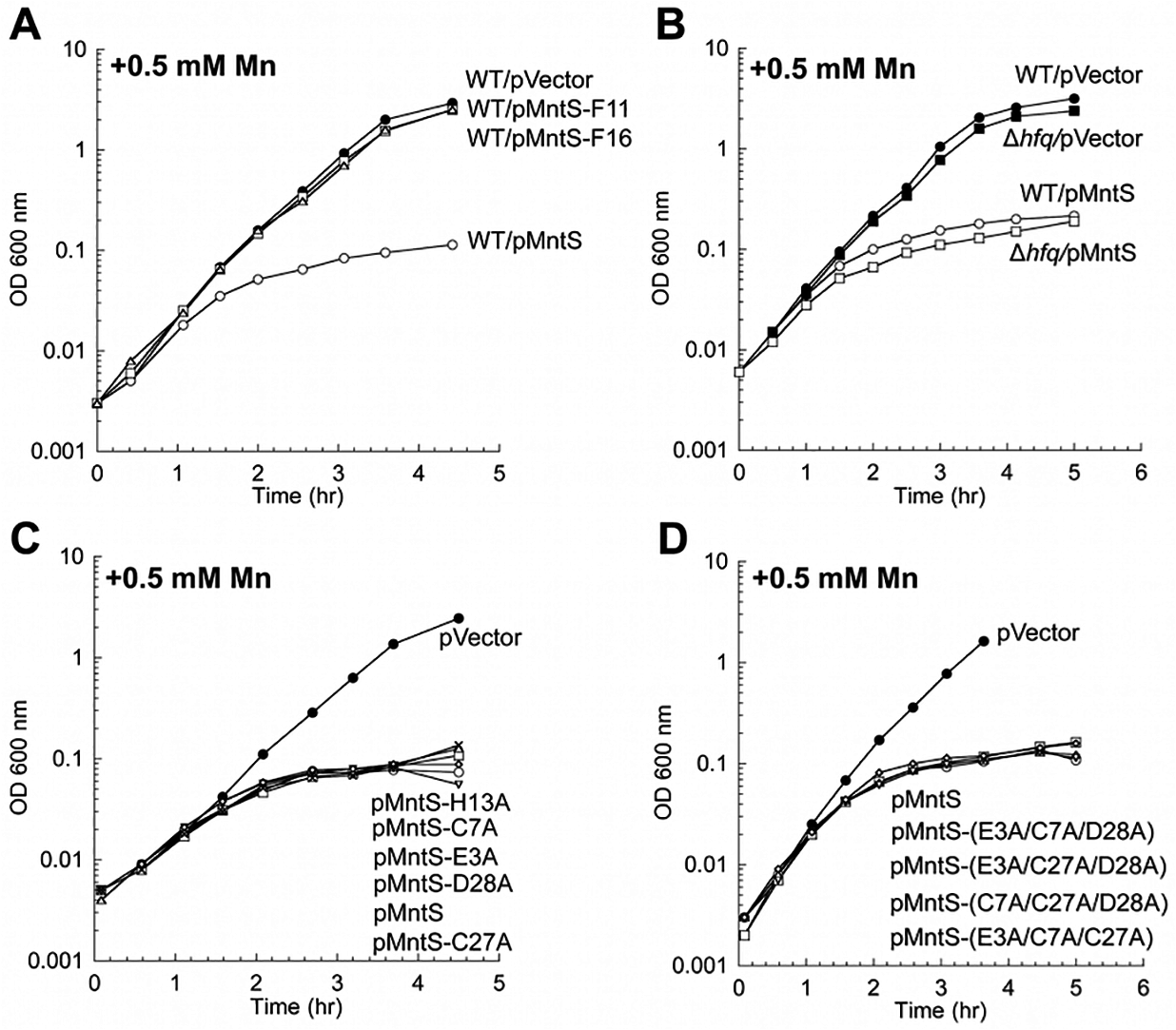 MntS confers manganese sensitivity by acting as a protein but not as a metal chaperone.