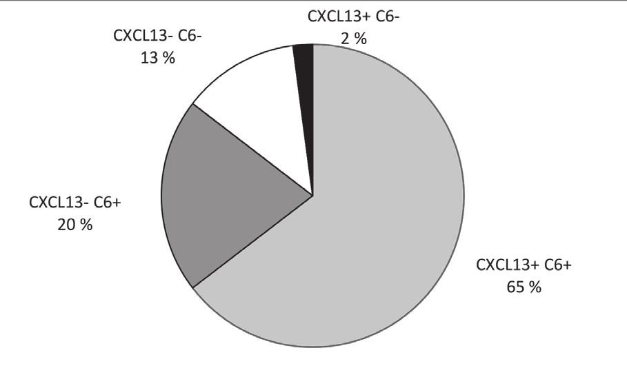 CXCL13 chemokin a anti C6 protilátky u pacientů s pozitivním protilátkovým indexem Figure 3. CXCL13 chemokine and antibodies to the C6 peptide in patients with positive antibody index