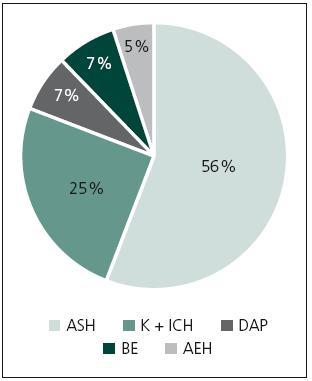 Rozdělení pacientů podle hlavní operační diagnózy před DK. ASH – akutní subdurální hematom, K + ICH – kontuze a traumatický intracerebrální hematom, DAP – difuzní axonální poranění, BE – edém mozku, AEH – akutní epidurální hematom.