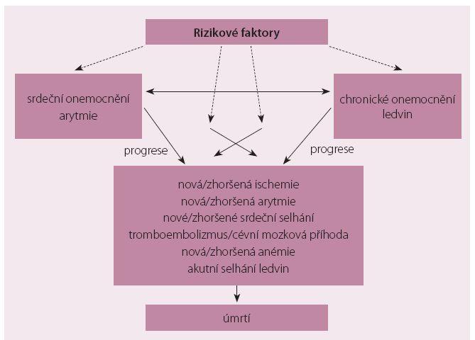 Schéma 1. Komplex interakcí mezi onemocněním srdce, arytmiemi a chronickým onemocněním ledvin ve vztahu k rizikovým faktorům, progresi onemocnění, komplikacím a k mortalitě.