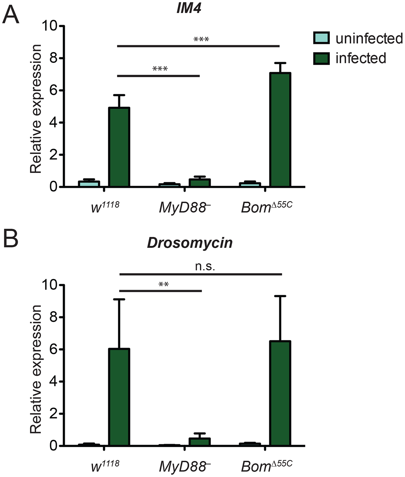 Toll-mediated activation of immune genes is normal in <i>Bom</i><sup><i>Δ55C</i></sup> flies.