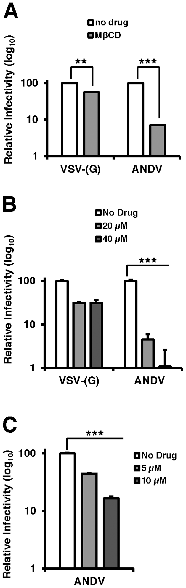 Cholesterol is required for ANDV infection.