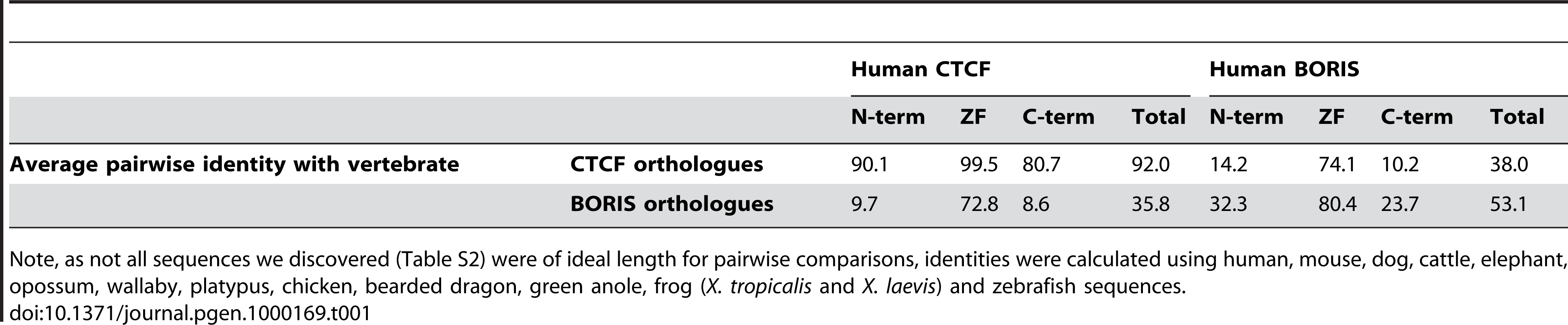Average pairwise similarity (%) between regions of human CTCF/BORIS and other vertebrate orthologues.