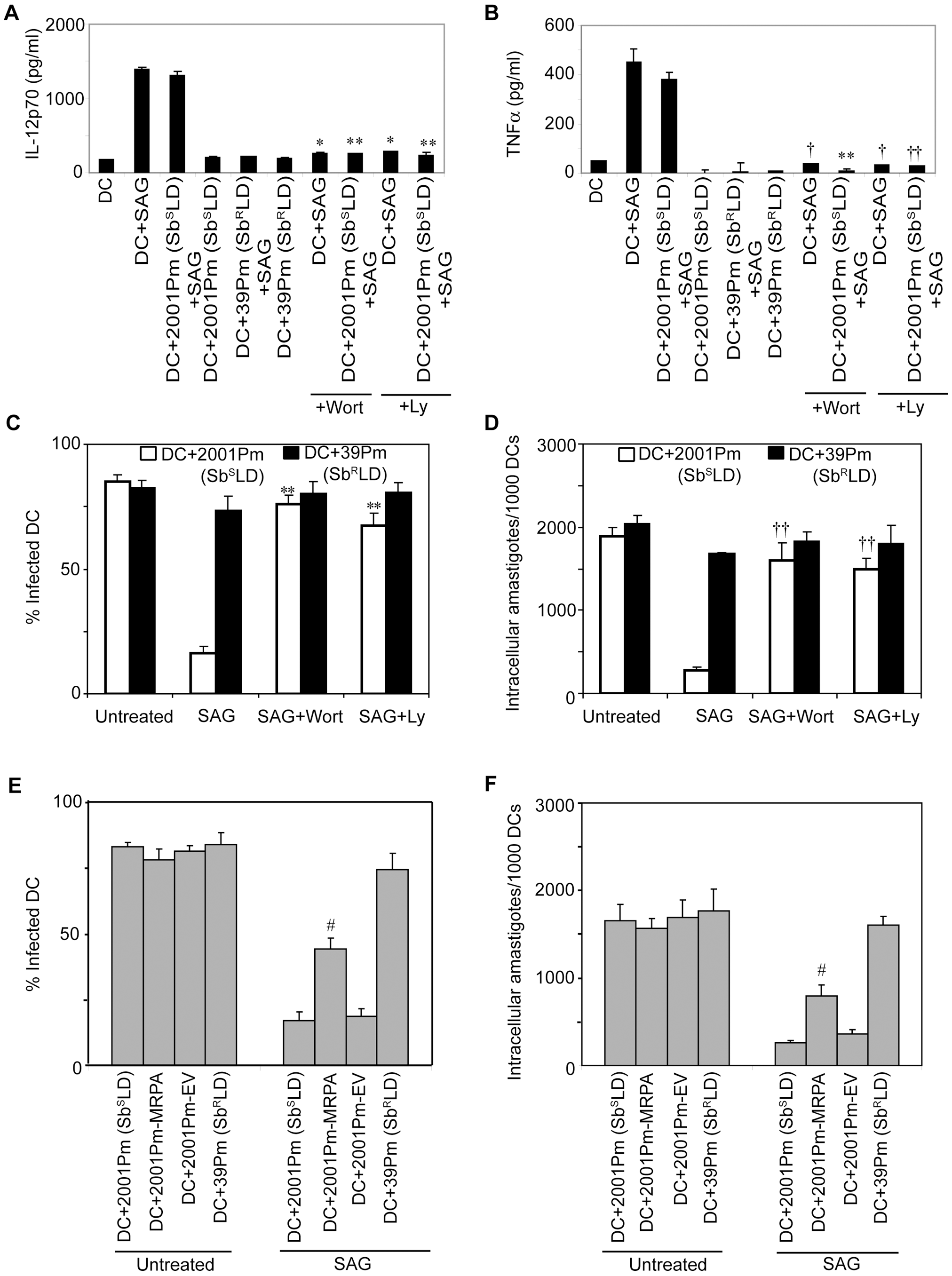 Sb<sup>R</sup>LD inhibits SAG-induced proinflammatory cytokine production and leishmanicidal effects by suppressing PI3K/AKT pathway.