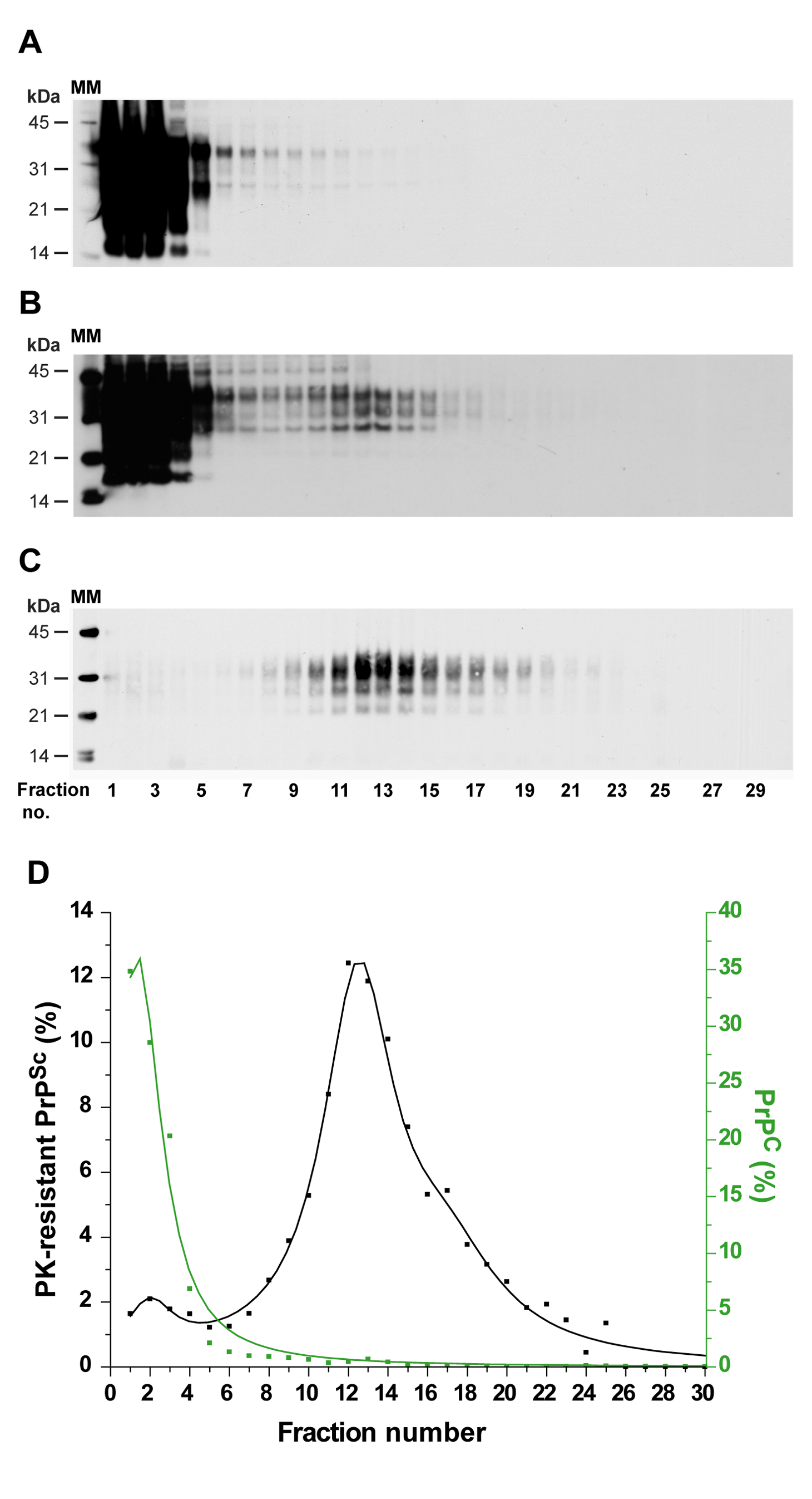 Immunoblot analysis of velocity sedimented PrP material from <i>tg338</i> mouse brain.