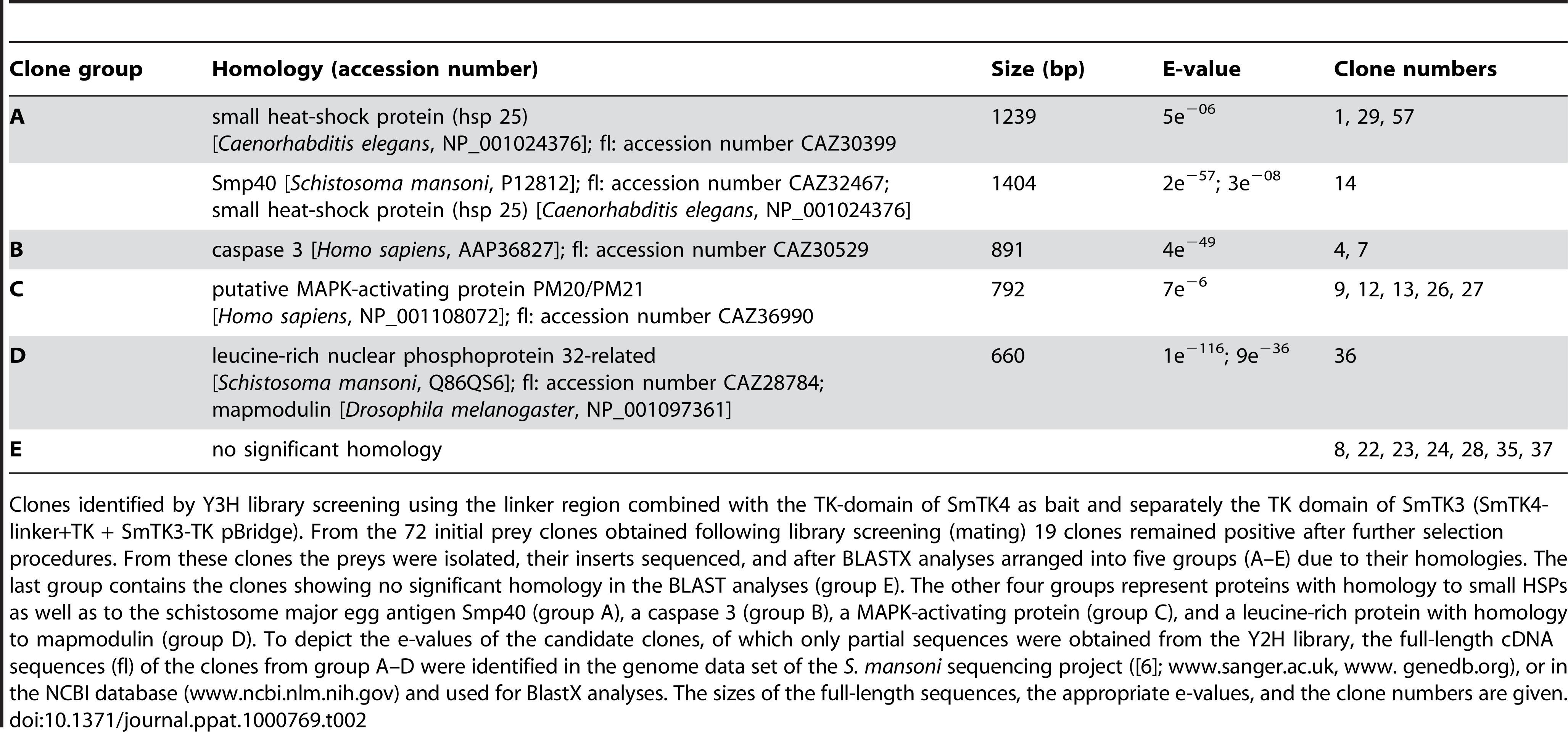 Identified downstream binding partners of SmTK4.