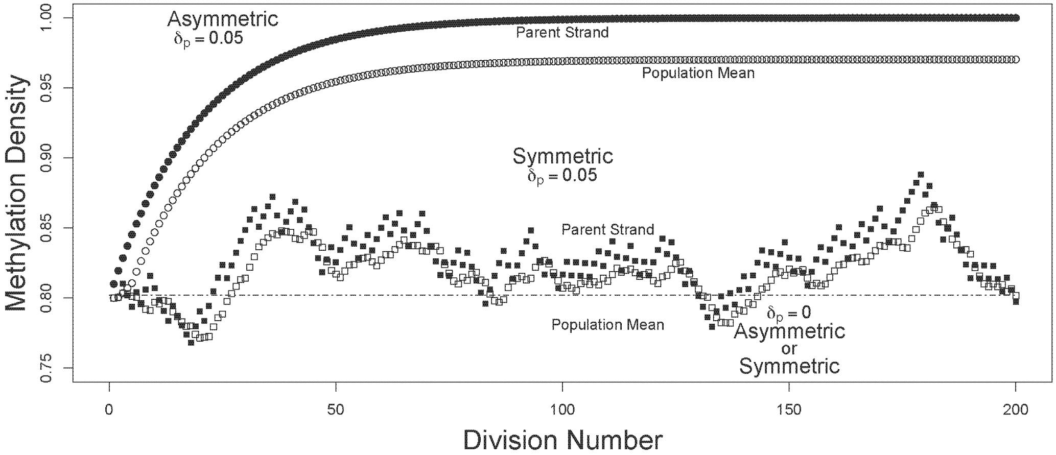 Trajectories of methylation densities under asymmetric or symmetric strand segregation, with high initial methylation density.