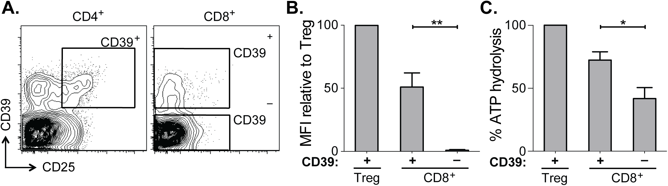 CD39 expressed by CD8<sup>+</sup> T cells in HCV infection is enzymatically active.