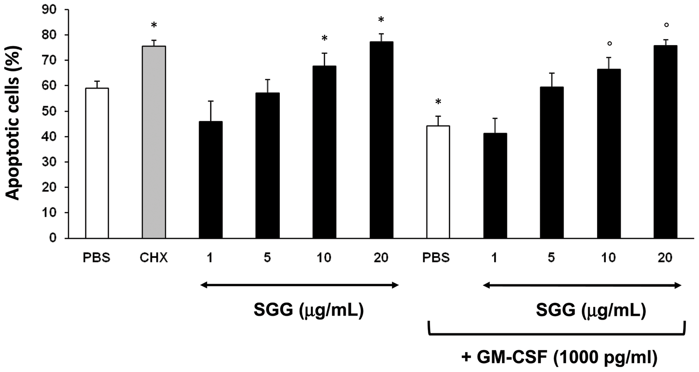 SGG induces neutrophil apoptosis.