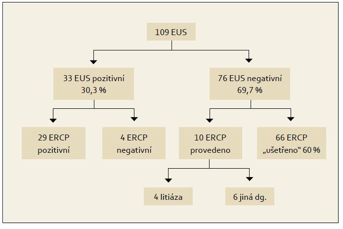 Schéma 1. Endosonografická vyšetření žlučových cest a zjištěné nálezy. Schema 1. Biliary tree endosonography and findings.