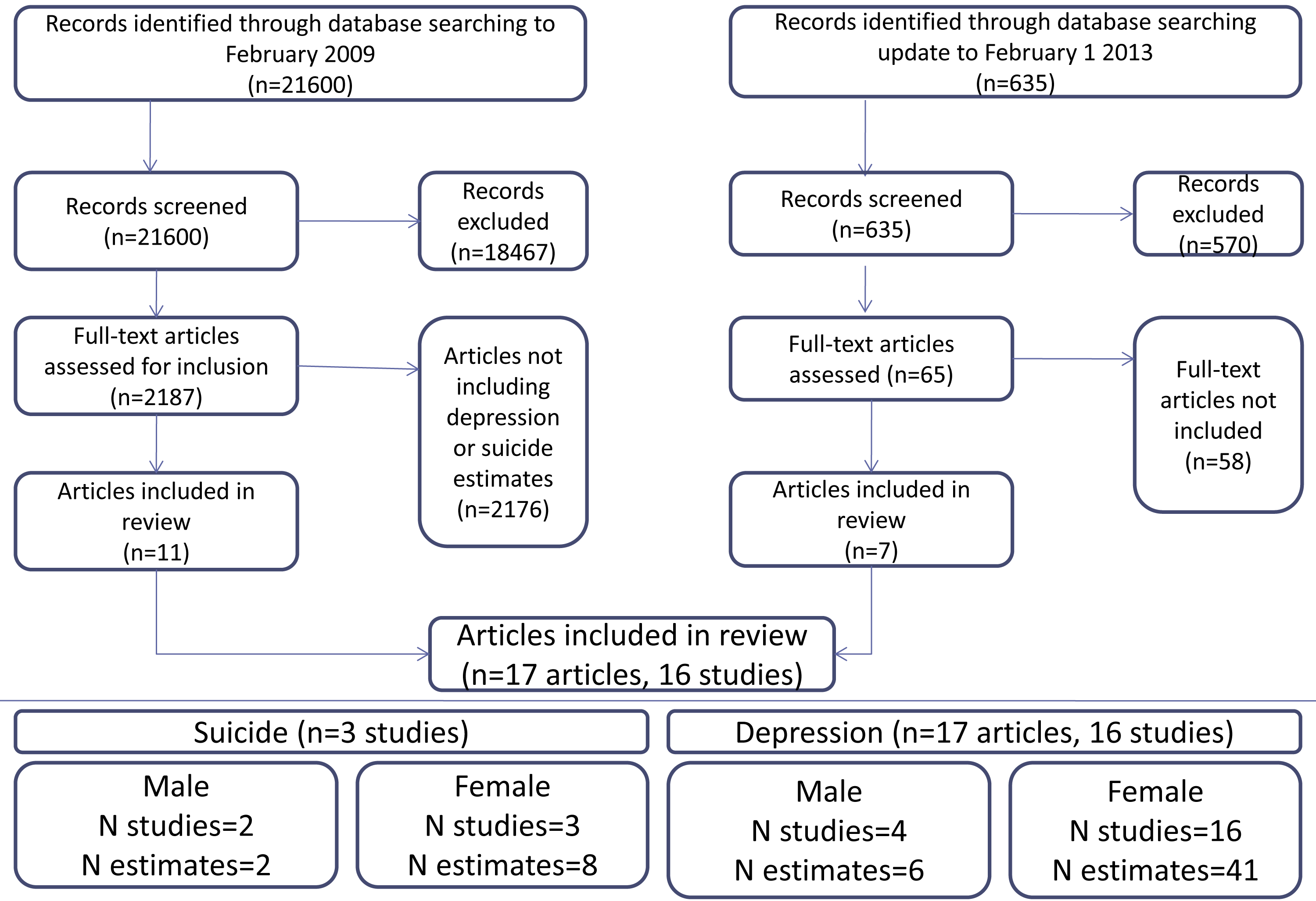 Flow of studies through the review.