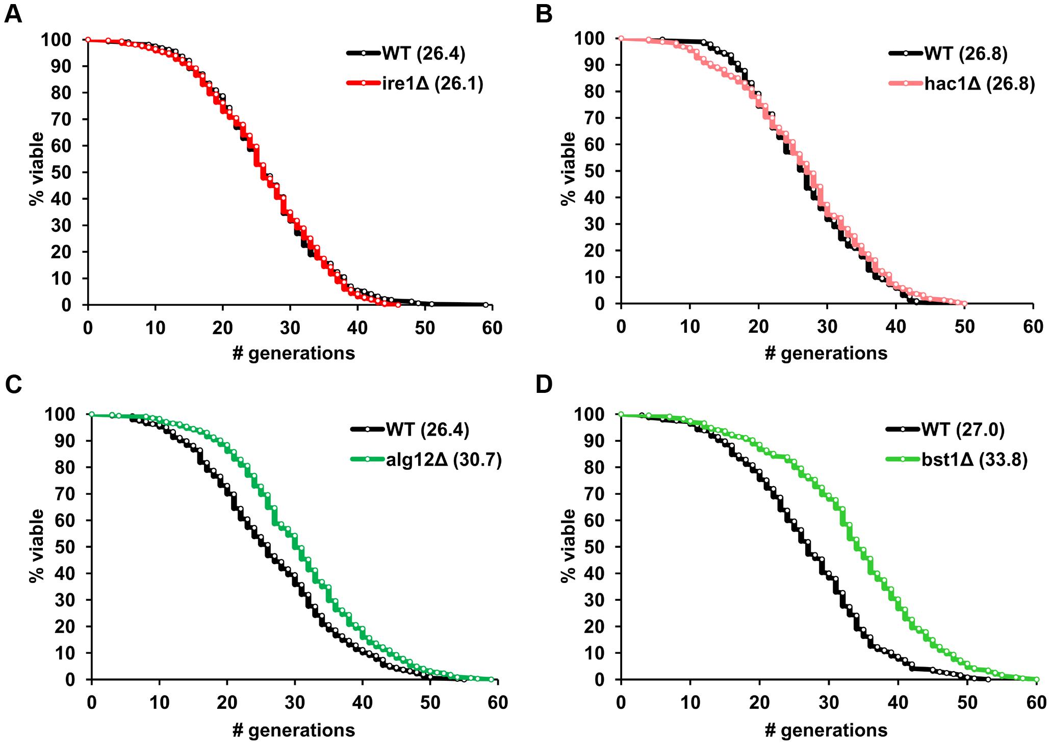 ER stress response genes differentially modulate yeast replicative lifespan.