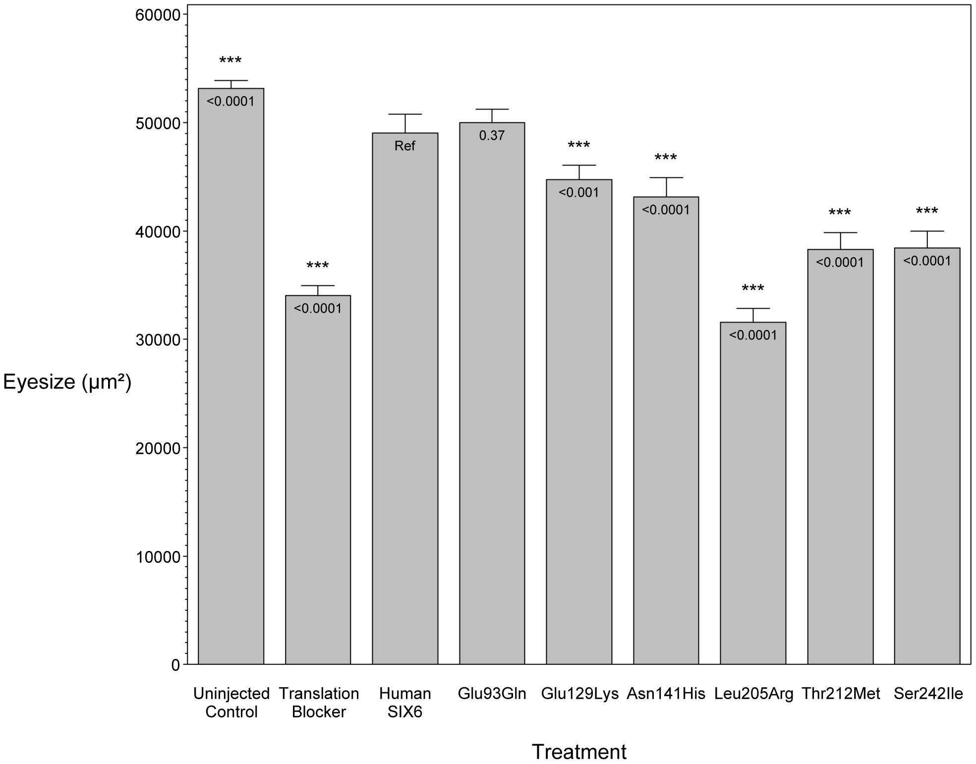 <i>In vivo</i> zebrafish morpholino complementation assay showing the effect of <i>SIX6</i> nonsynonymous variants.
