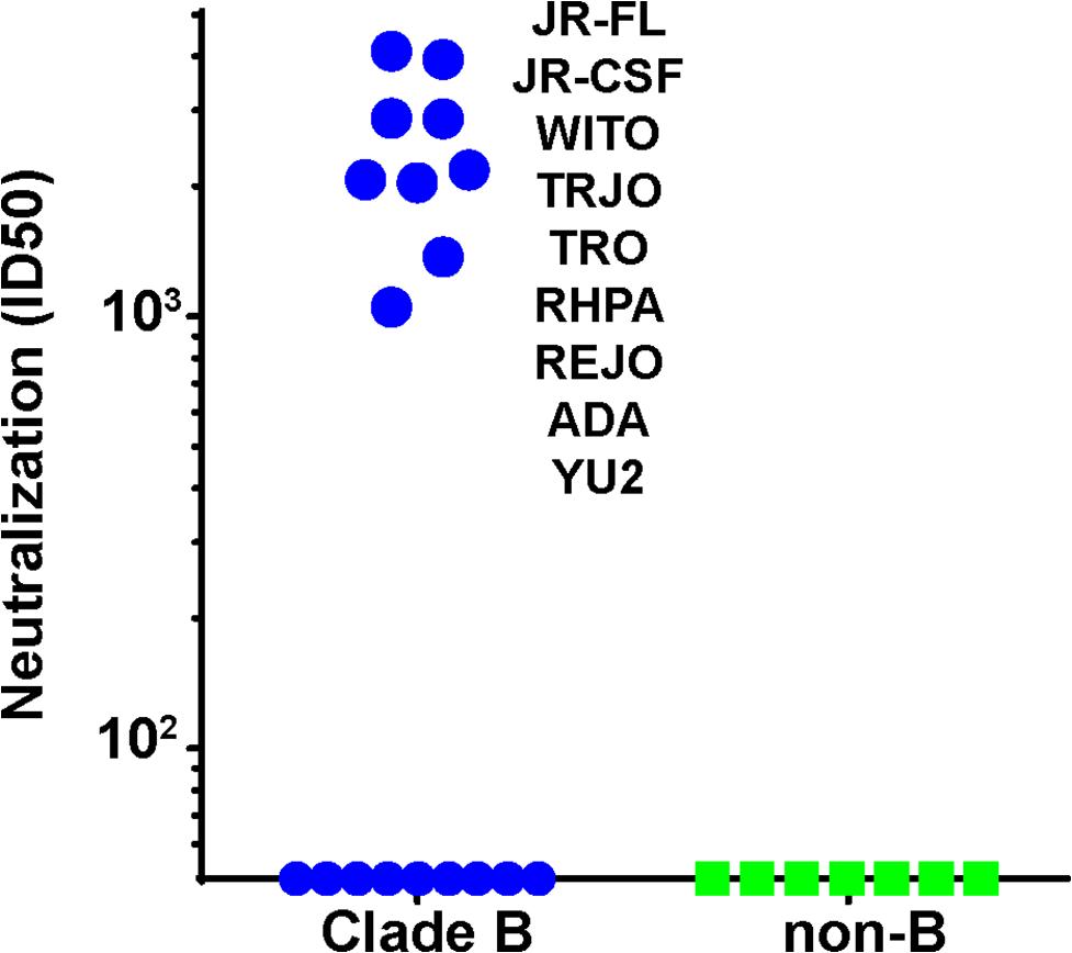 Serum 613 neutralization breadth of N197 knockout mutants.