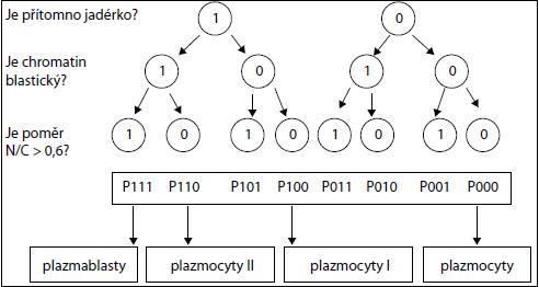 Konstrukce algoritmu pro automatickou subklasifikaci plazmatických buněk u MM. Jsou položeny tři po sobě následující otázky a jejich odpovědi jsou ano (1) nebo ne (0).