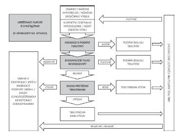 Schéma rozvahy tekutinové terapie