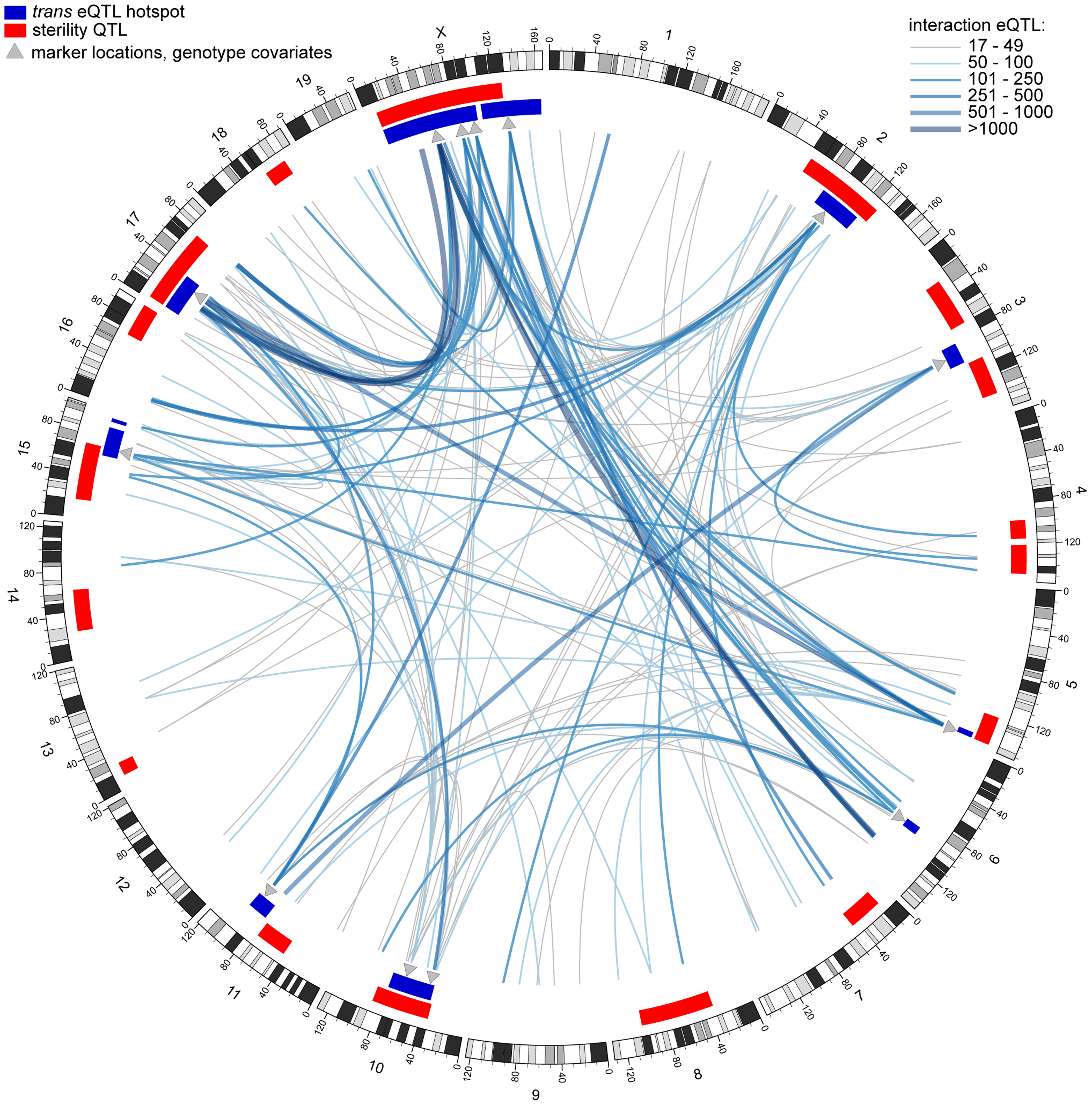 Genetic interactions revealed by conditional mapping.