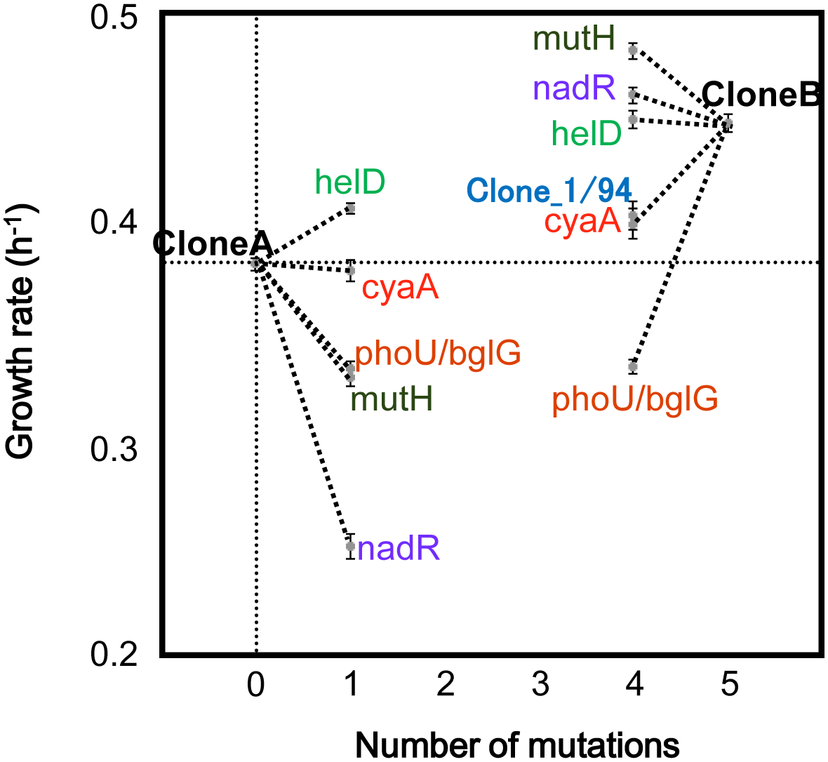 The effects of the five non-synonymous mutations in the first cluster on the growth rate.