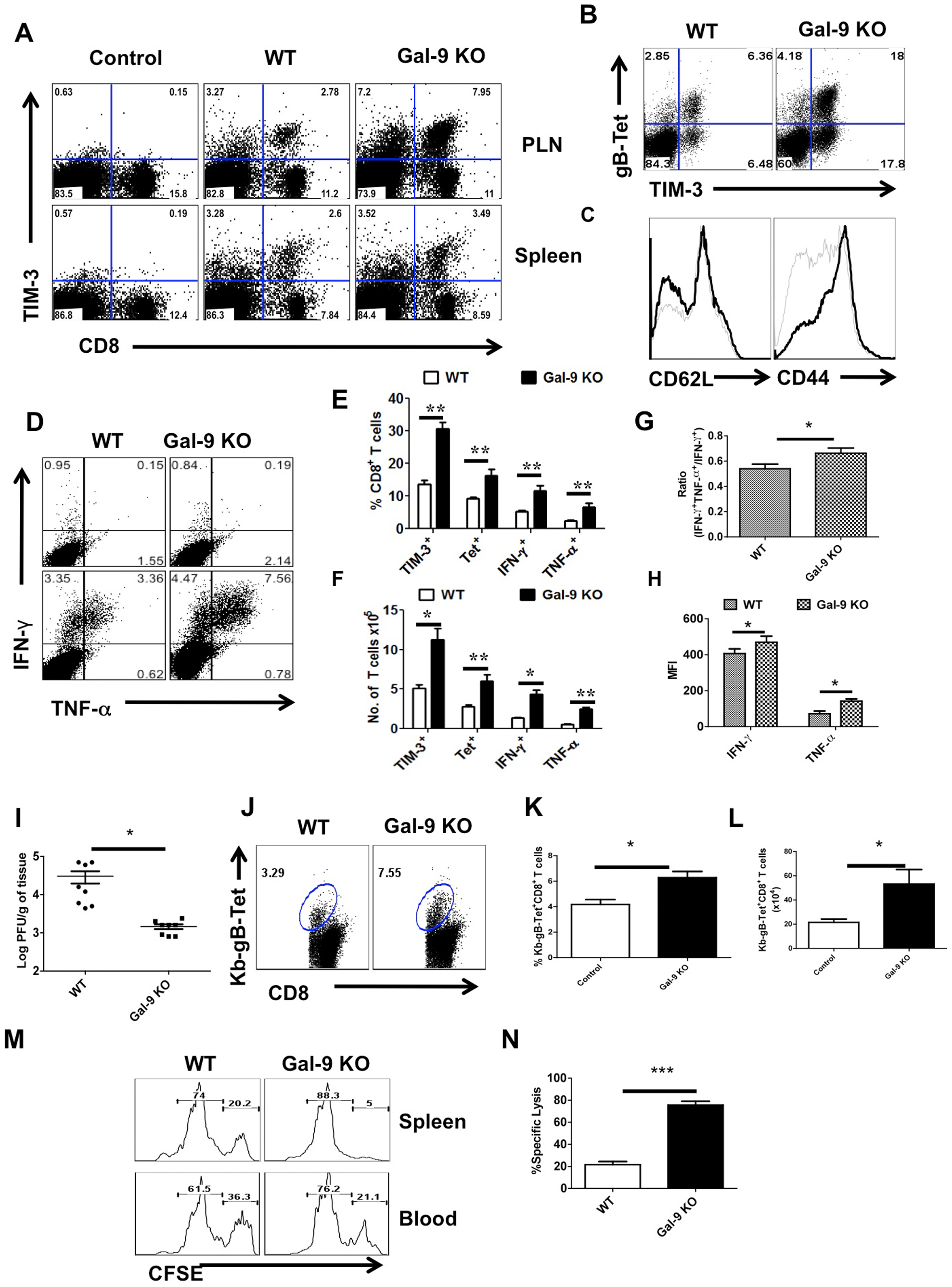 Galectin-9 knockout animals mount stronger virus-specific CD8<sup>+</sup> T cell responses in the acute phase.